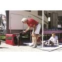 CARRY DOG 06437-01